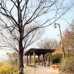 Parcul Naksan din Seoul