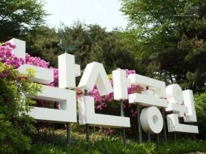 Despre Parcul Namsan